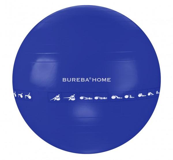 Bureba Ball Home